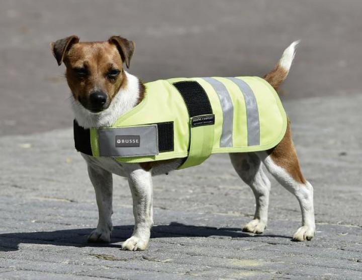 Hundedecke SHINE